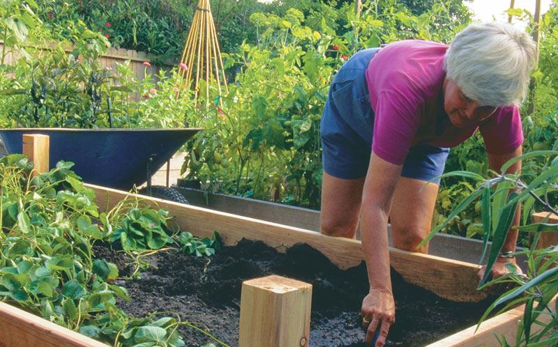 Raised Garden Bed Challenge