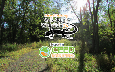 Two Great Reasons to Walk or Run on the Wild Side