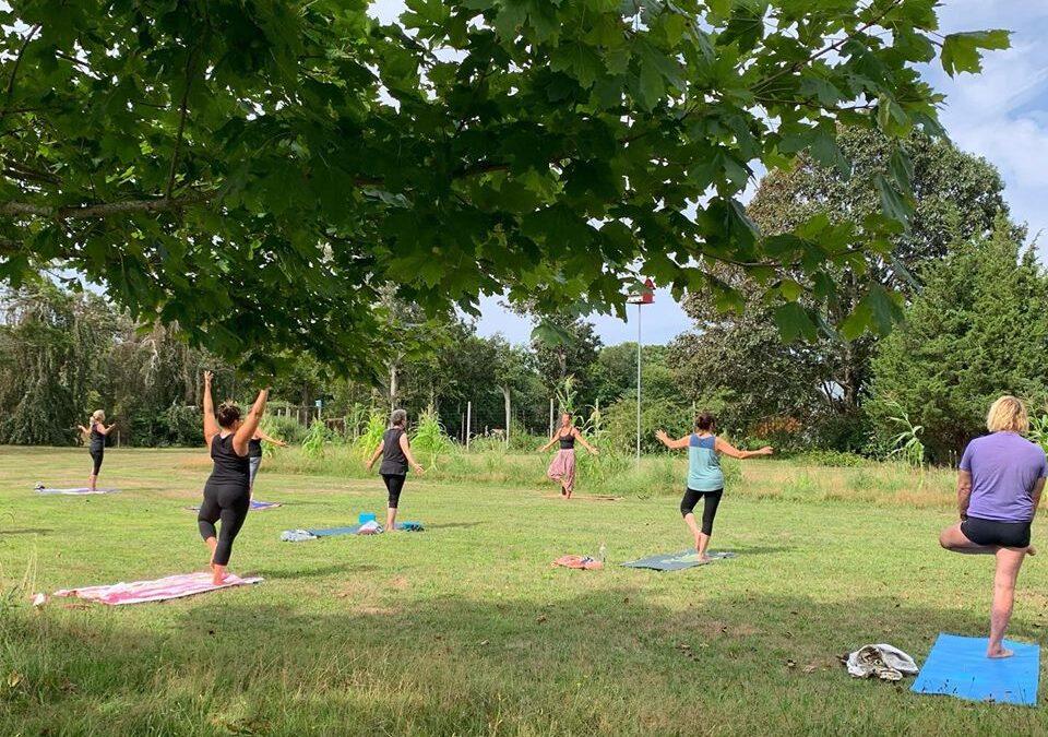 Yoga: Nama.Stay.Safe Yoga Class at CEED